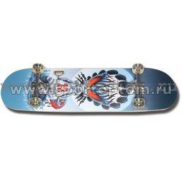 Скейт SENHAI 85-SHN 78,7*20 см