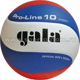 Мяч волейбольный GALA Pro Line 10 соревновательный клееный (PU) BV 5581 S Бело-сине-красный